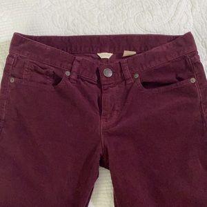 J. Crew Maroon Burgundy Corduroy Pants 28